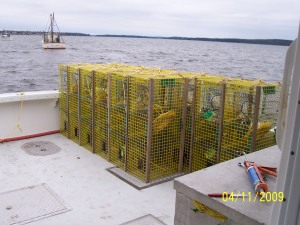 Loading traps on the boat